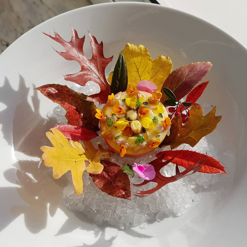"APPLE ""Indian Summer"" 🍎🍂▪︎ yogurt ▪︎ Anapurna curry ▪︎ quince gel ▪︎ salted liquorice ▪︎ rapeseed oil ▪︎ thyme ▪︎ edible flowers"