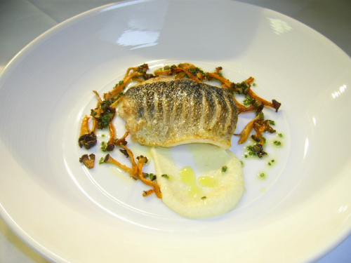 Sea bass, parsley root purée, girolles & chicken jus