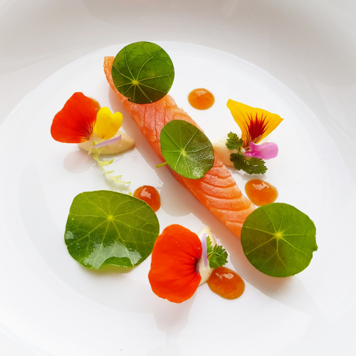 "Lightly cured FAROE ISLANDS SALMON ▪︎ celeriac mousseline ""cold"" ▪︎ sea buckthorn fluid ▪︎ nasturtium flowers & green"