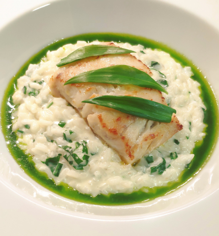 Peterhead Coley Fillet, Wild Garlic and Corra Linn Risotto, Wild Garlic Oil
