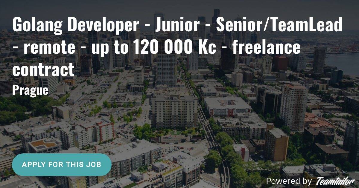 Golang Developer - Junior - Senior/TeamLead - remote - up to
