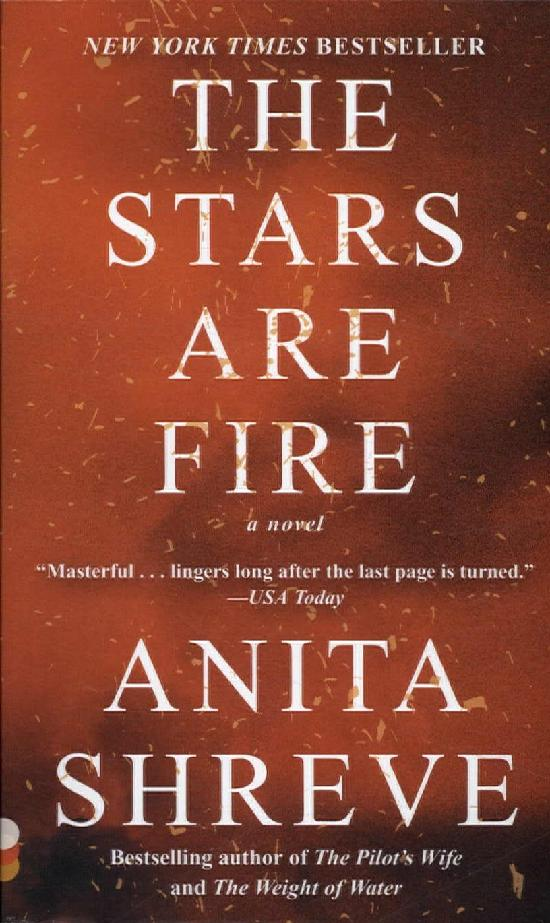Shreve, Anita: The stars are fire