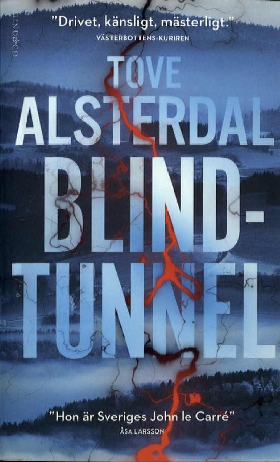 Alsterdal, Tove: Blindtunnel