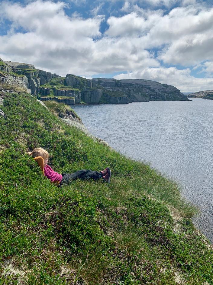 Livet på fjellet nytes! Her ved enden av høyfjellet mellom Melands Grønahei og ned mot Grasdalen.
