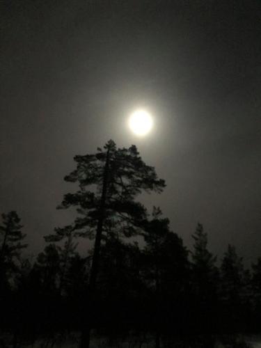 Måneskinnstur på Vardalsåsen 09.01.20