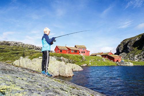 Uke 33: Skitt fiske!