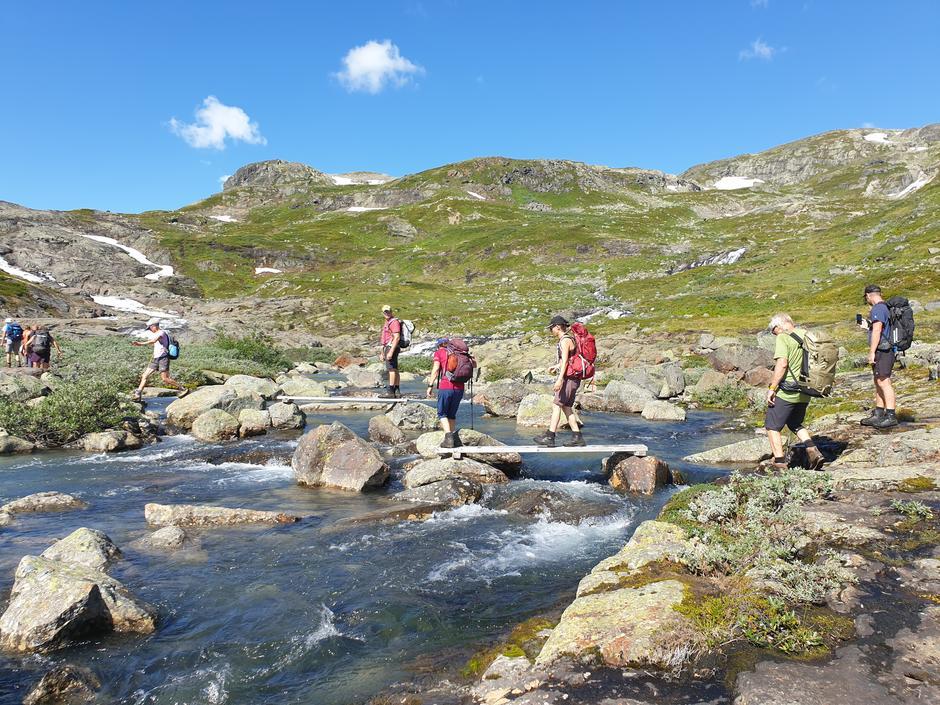 Artig sommer bru over elva i Mjølkedøla.