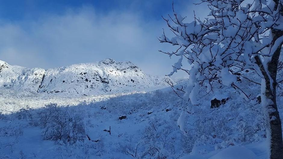 Fra Tverrdalen ovenfor Vinddalen.  12 november ca 30 cm nysnø  på stien til Skåpet.