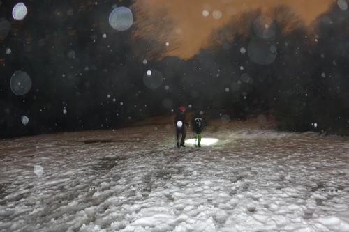 Snøballkrig i Alvøskogen
