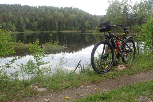 Flora og historie sør for Drammen