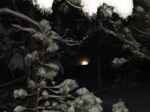 Fullmåne over Brandsøyåsen 31.12.2009