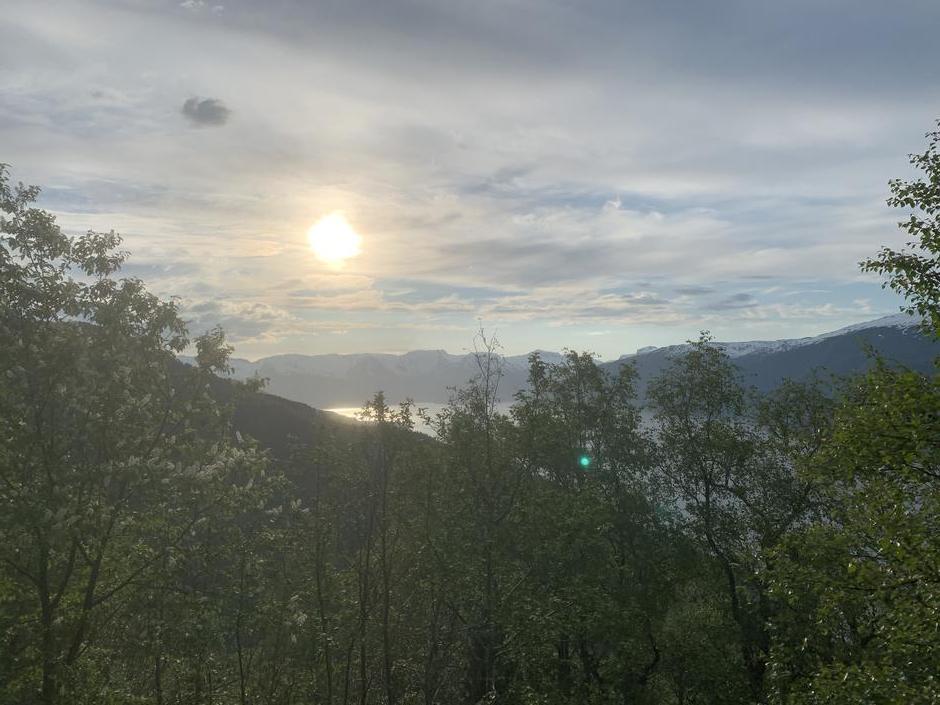 Utsikt mot Sognefjorden