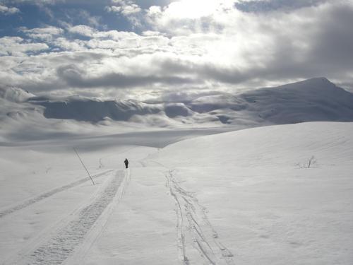 På vei mot Selhamar fra Vikafjell