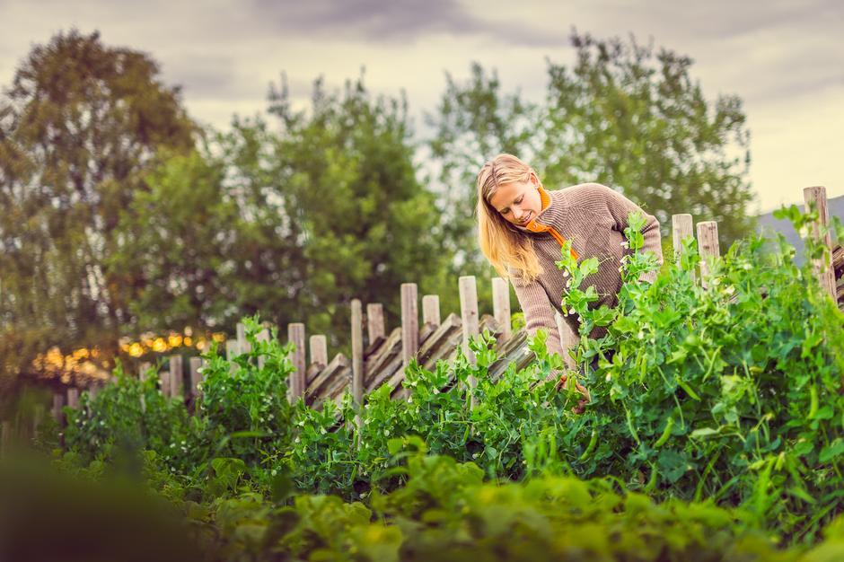 RÅ SAKER: Thea Dalen fra Vågå leverer økologiske grønnsaker til Gjendesheim under det treffende navnet Rå Saker.