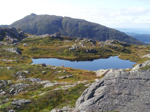 Utsikt fra Totlandsfjellet