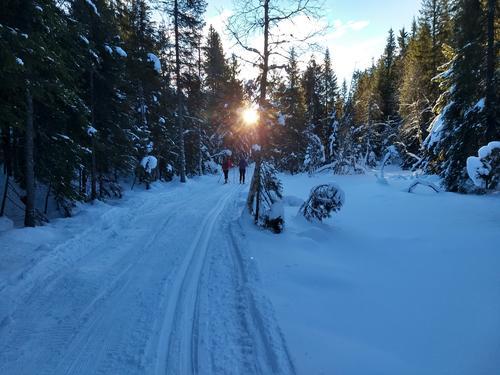 Skitur sørover like før Kikut.