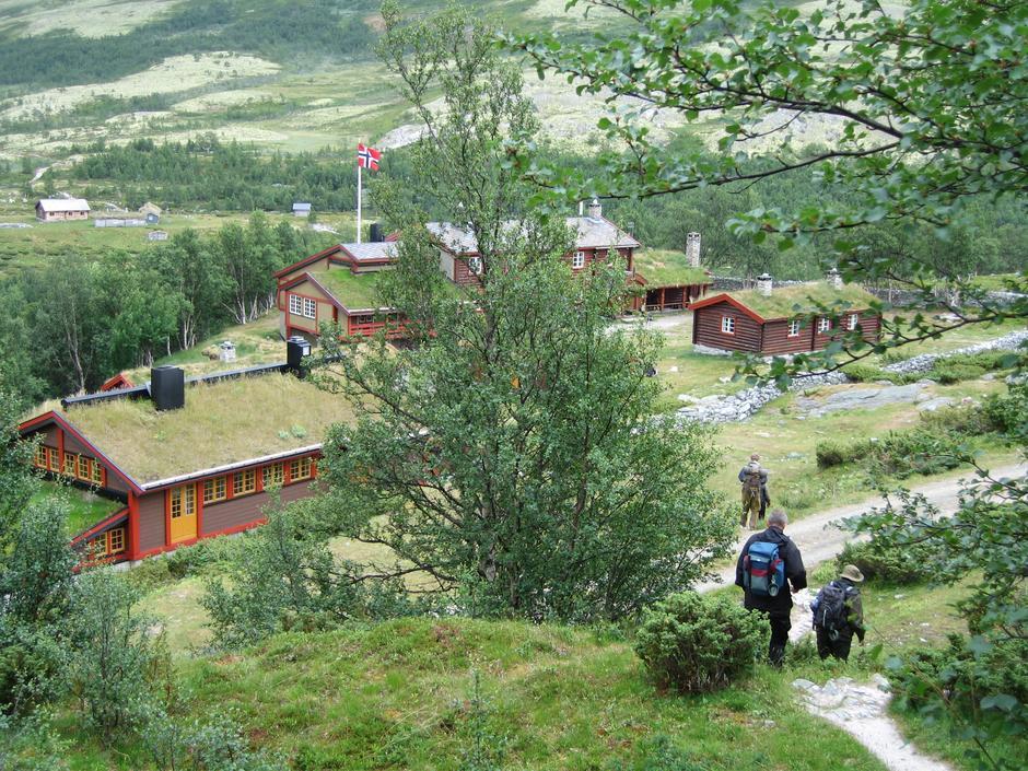 Bjørnhollia Foto: Ellen Næsje