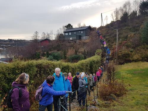 Siste seniortur for Fjell Turlag i 2019 var på Nordre Bildøyna