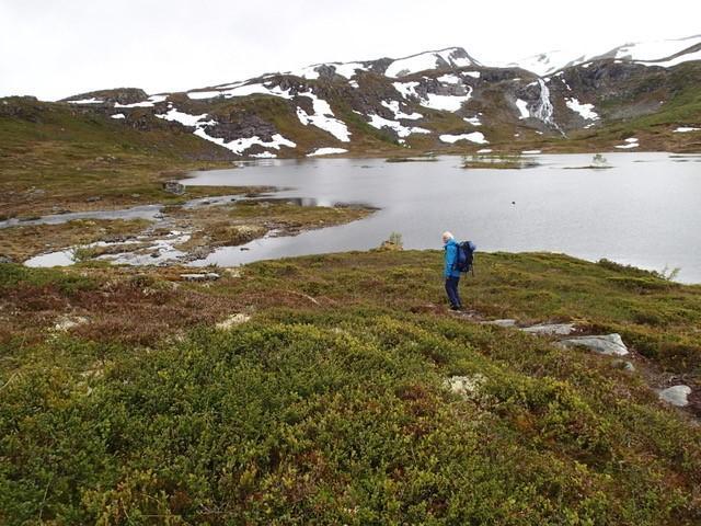 Fredag 23.6: Vatnane i Stølsheimen. Fine forhold. Stor vannføring i elv som må krysses på ruten fra Tenne i Arnafjord.