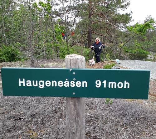 Søndagens tur til Haugeneåsen