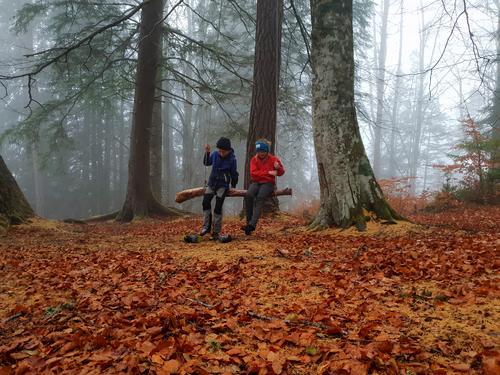 Even og Eirin koser seg en senhøstdag. Bildet er tatt i bøkeskogen i Stangvik på Nordmøre. Foto: Vigdis Rodal.