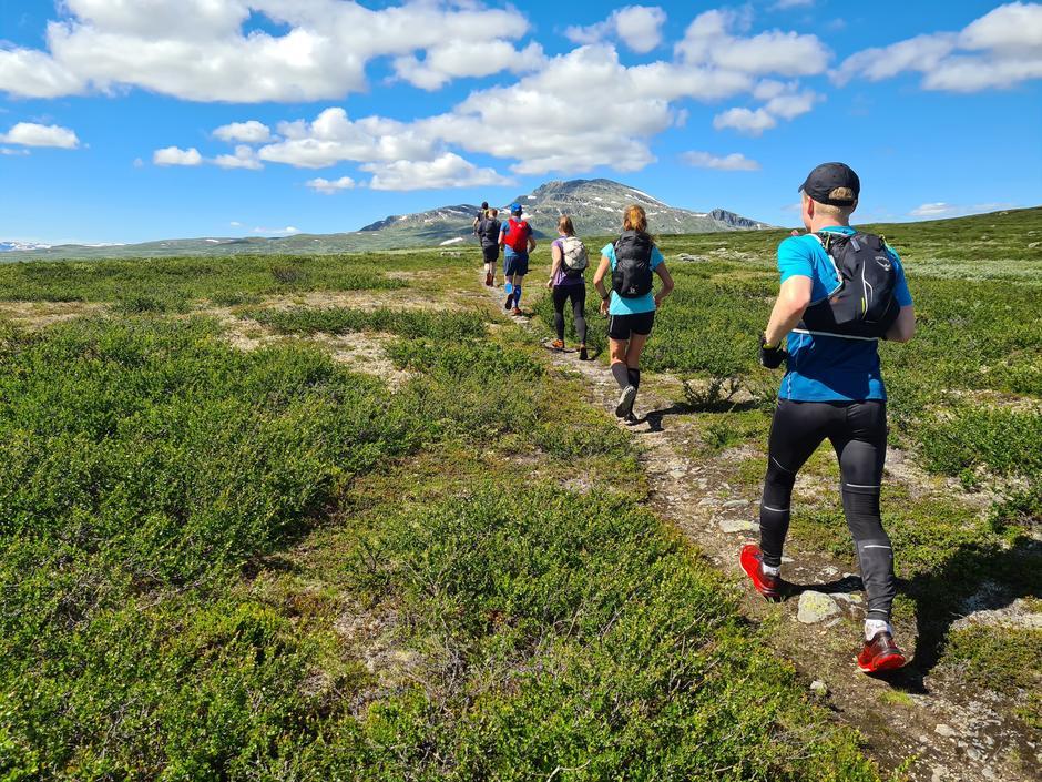 Bli med DNT Fjellsport på løpeturer i fjellet