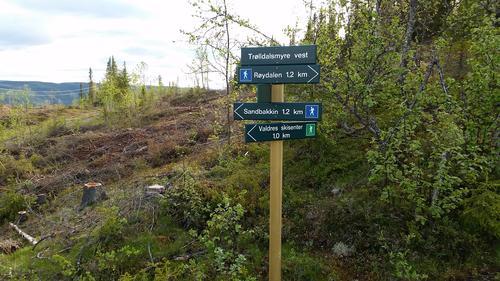 Stinettet i Skrautvål Heimås
