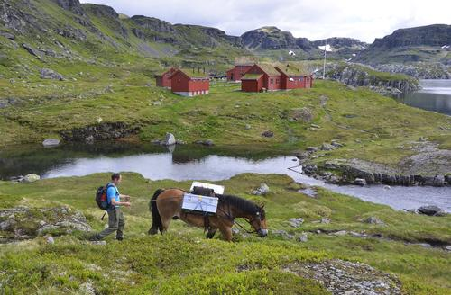 Maten fraktes med hest til Stranddalen. Kortreist, lokalprodusert og miljøvennlig.