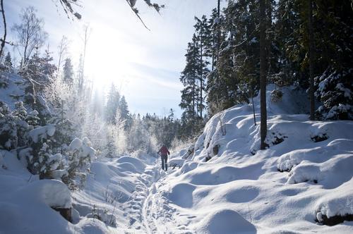 Vinter i Marka