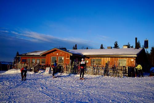 Uke 50: Snøvær og kuldegrader på Hedmarksvidda
