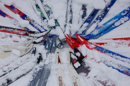Skisamling i snøen