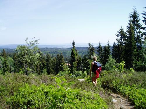 Nordmarka, Krokskogen og Romeriksåsene