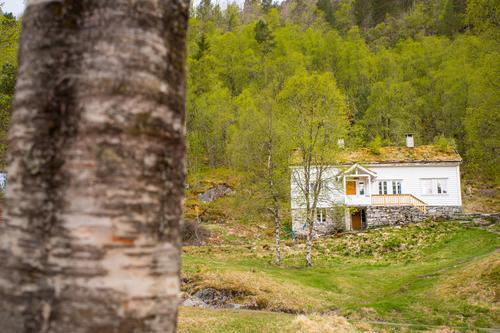 Ta turen til Træet gård på Osterøy