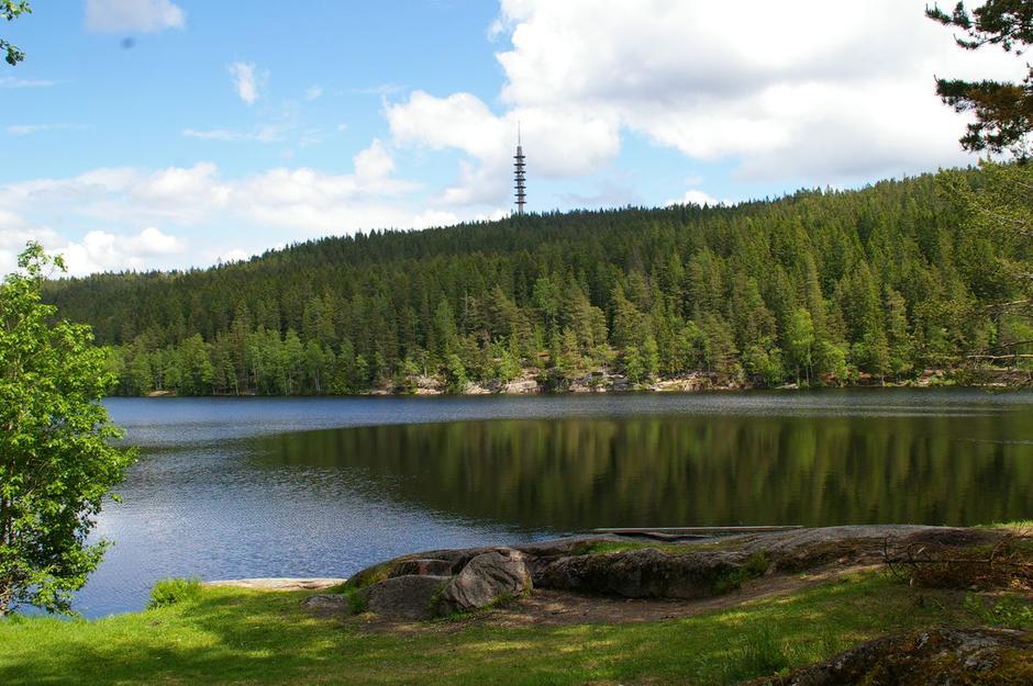 Røverkollen rundt: Utsikt til tårnet på Røverkollen fra Steinbruvann.