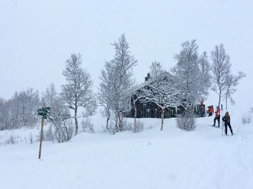 Erlingbu, Bodømarka