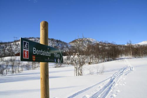 Hele løypa fra Auversvatn til Tjørnbrotbu via Berdalsbu til Bjørnevasshyttaer ferdig kvistet
