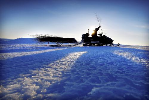 Kvisting av vinterruter