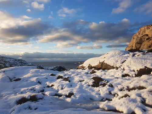Vinter på Algrøyna