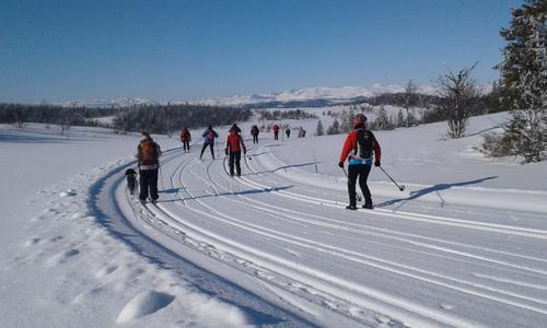 7. mars gikk Seniorgruppa Saurrunden på ski