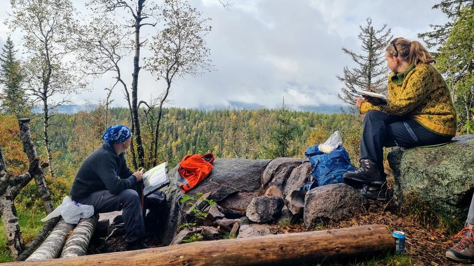 Utsikt mot Barlindåsen fra Granberget