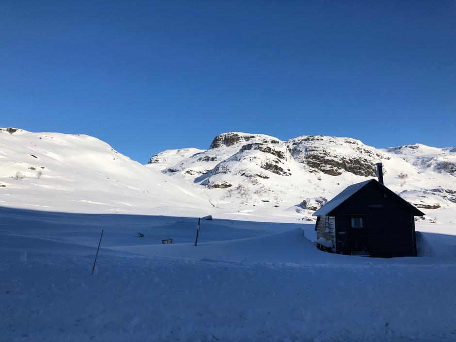Lortabu retning Sandvatn mandag 25 mars. 20 cm herlig nysnø.