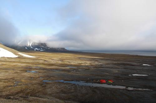 Arktisk sommereventyr