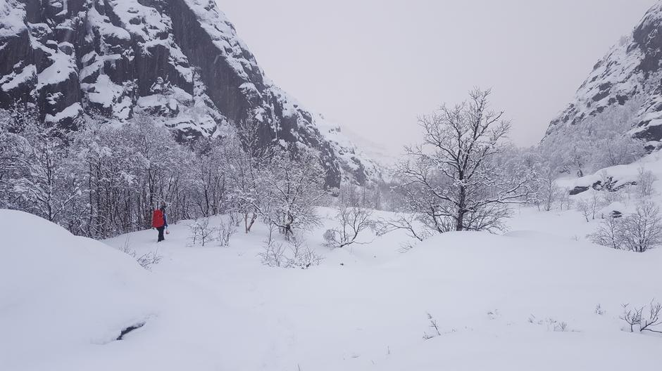 16. mars. Bilde tatt fra Skåpet og nedover stien. Godt med snø, så truger kan være aktuelt å ta med for de siste kilometerne.
