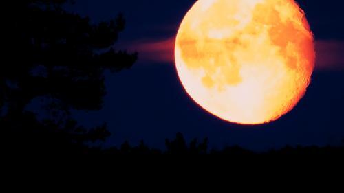 Måneskinnsturen blir avlyst!
