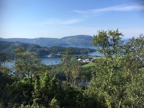 Utsikt frå Borgaråsen mot Randøy og Ombo