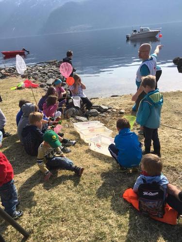 Tur ved fjorden