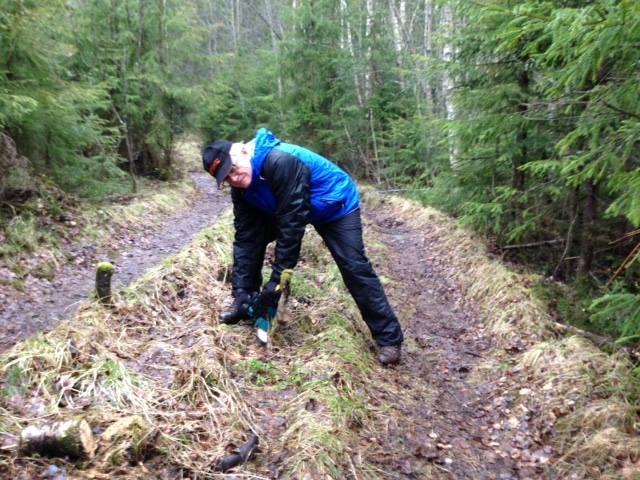 Når Fredrik har ryddet stien blir den lettere å gå!