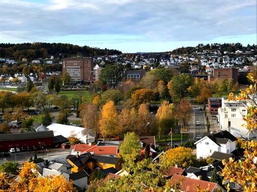Utsikt fra Preståsen over Sandefjord sentrum