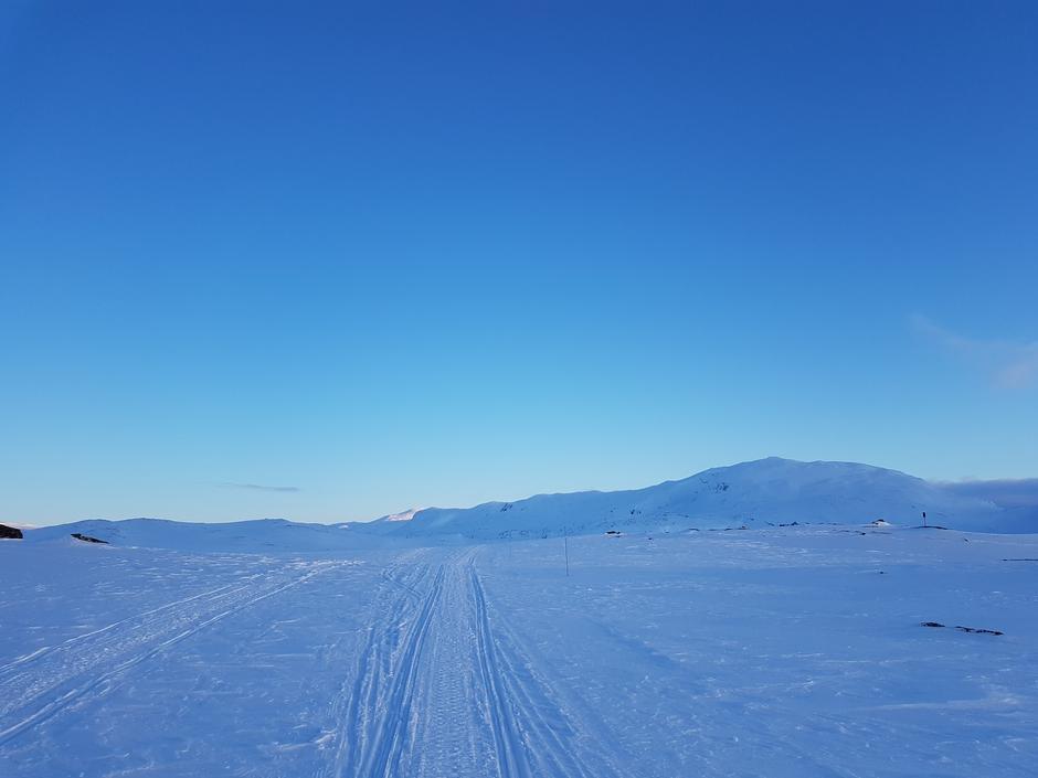 Filefjell 15.04.21. Jotunheimen i bakgrunnen.