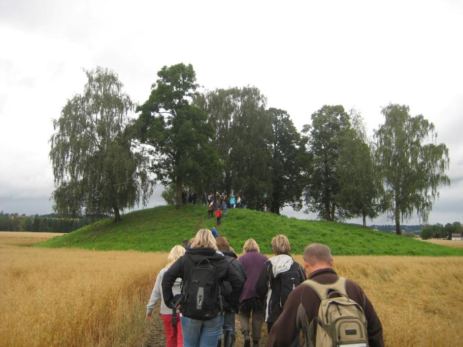 Halvdanshaugen på Steinsletta i Hole kommune